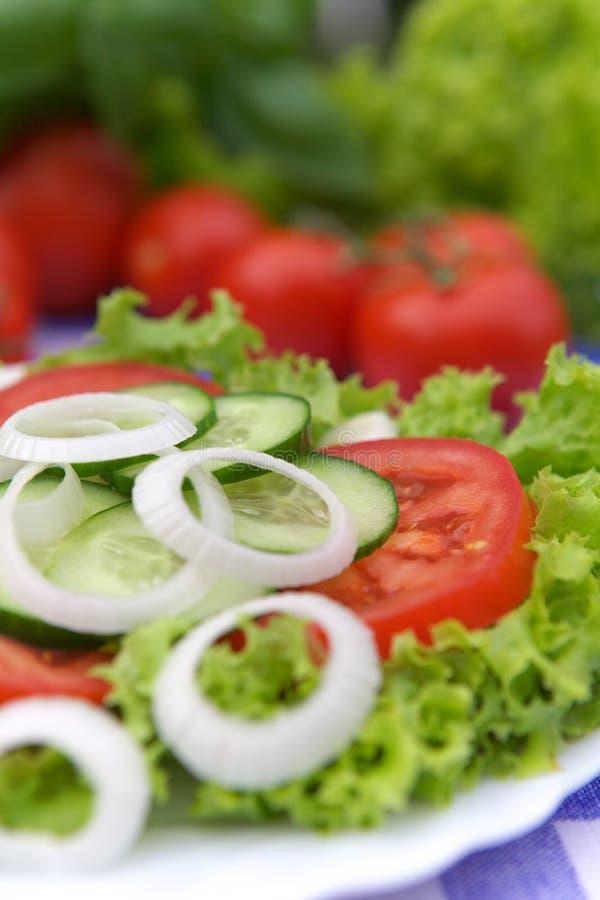 Salade végétale image stock