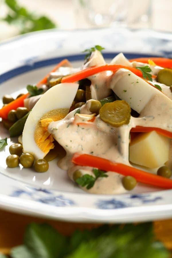 Salade végétale avec l'oeuf photo stock
