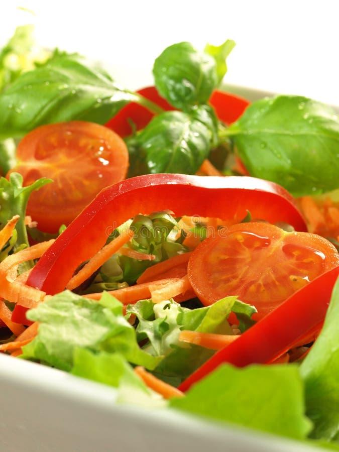 Salade végétarienne photos stock