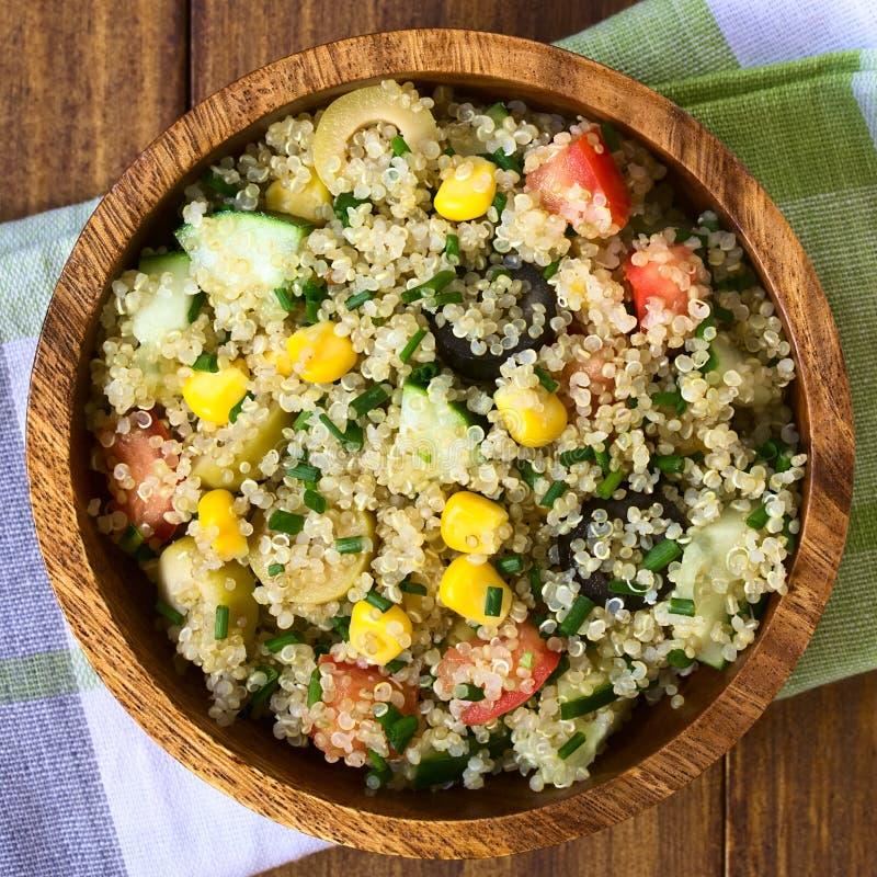 Salade végétarienne de quinoa image stock