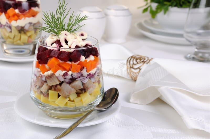 Salade van haringen met groenten stock afbeeldingen