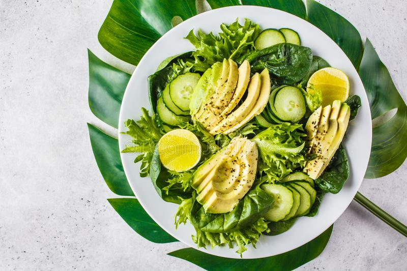 Salade verte d'avocat et de concombre dans le plat blanc Le menu de Detox, nourriture de vegan, usine a bas? le r?gime photos libres de droits