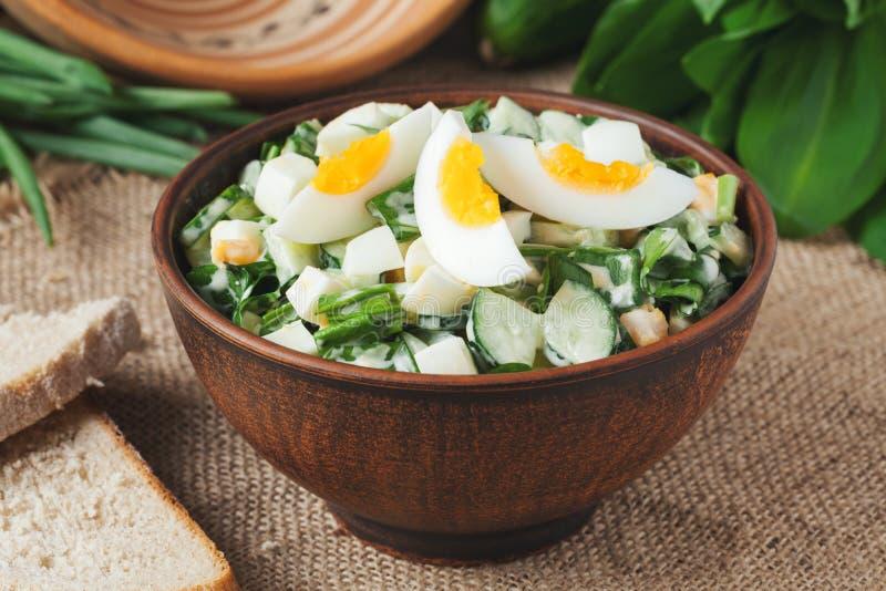 Salade verte de ressort avec l'ail et le ramson coupés photos stock