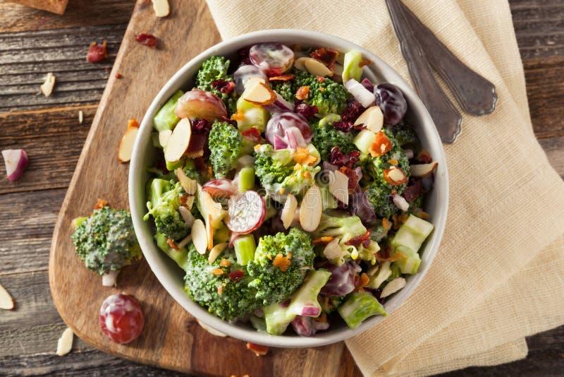Salade verte faite maison de brocoli image stock