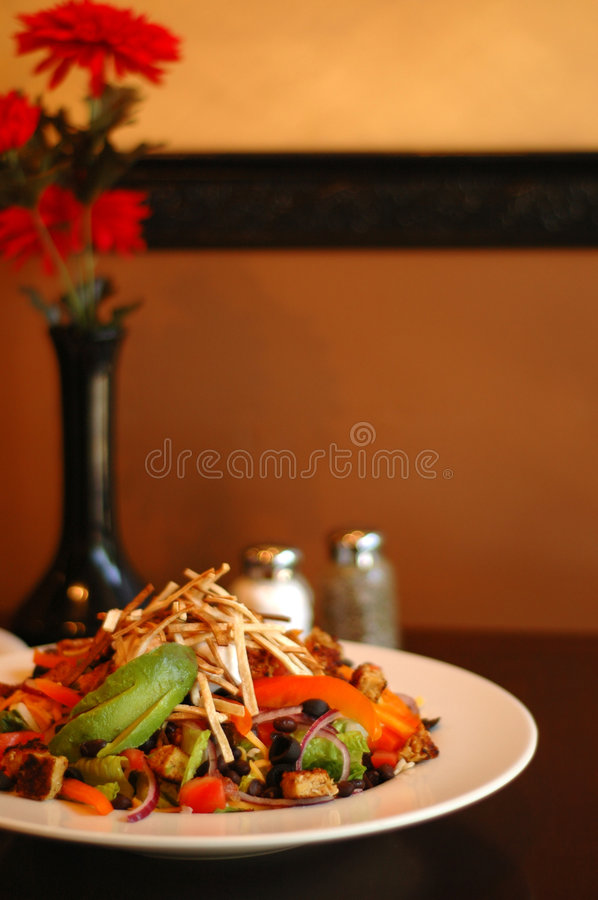 Salade vibrante images stock
