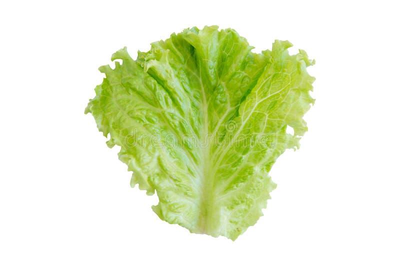 Saladeblad Sla die op witte achtergrond wordt geïsoleerde Met het knippen van weg royalty-vrije stock fotografie