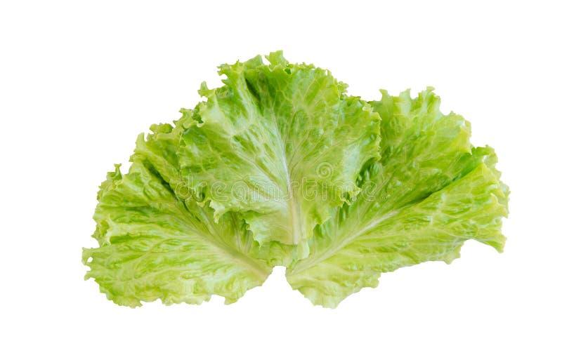 Saladeblad Sla die op witte achtergrond wordt geïsoleerde Met het knippen van weg royalty-vrije stock foto's