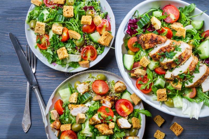 Salades saines faites en poulet chaud et fraîches photographie stock