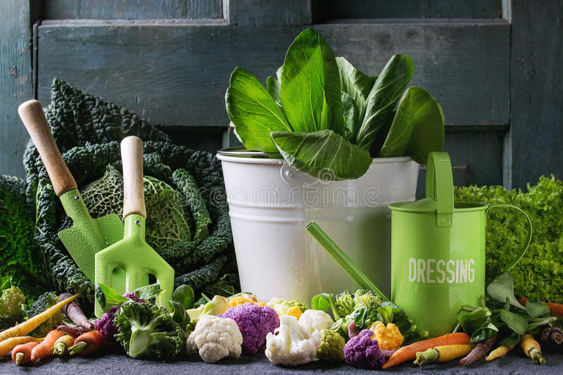 Salades vertes, chou, veggies colorés photo stock