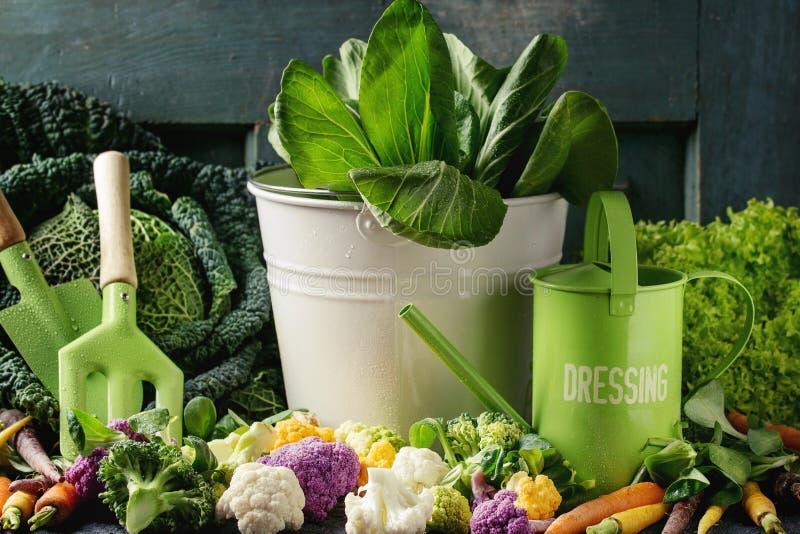 Salades vertes, chou, veggies colorés photo libre de droits