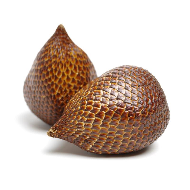 Salak eller ormfrukt royaltyfria bilder