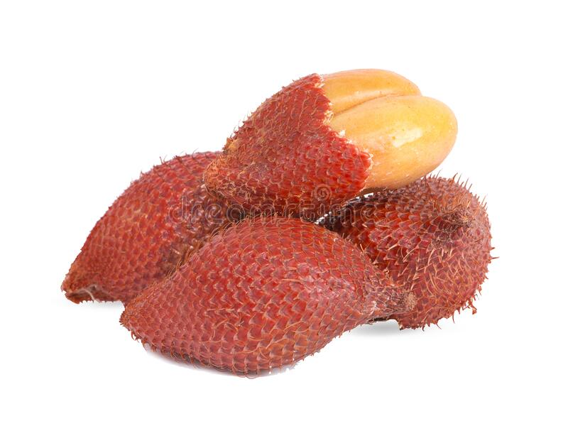 Salak fruit, Salacca zalacca an isolated on the white background royalty free stock image