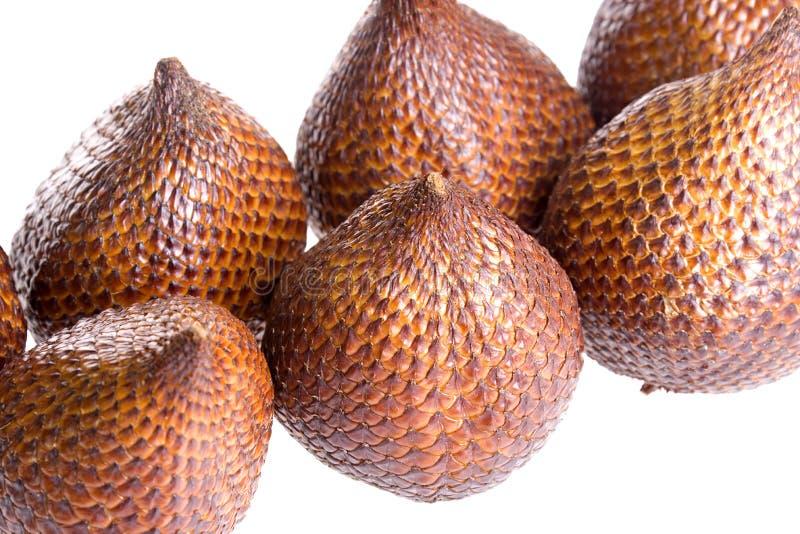 Salak fruits stock image