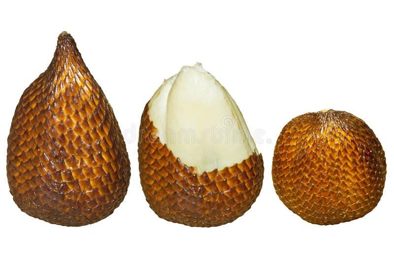 Salak, fruta isolada imagem de stock