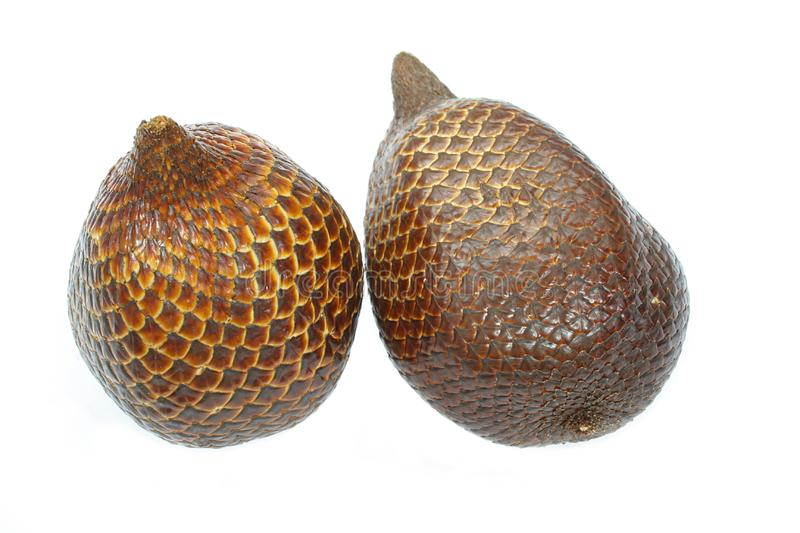 Download Salak or snake fruit stock image. Image of tropical, food - 4091167