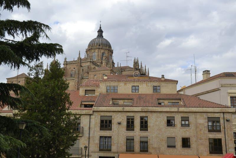 Salamanca imagen de archivo