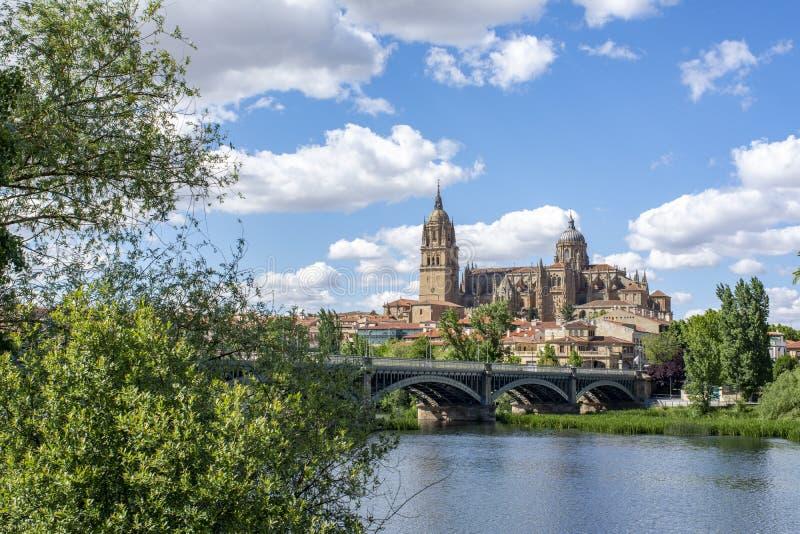 Salamanca altes und neues Cathedrales dachte ?ber Tormes-Fluss, Spanien nach lizenzfreies stockfoto
