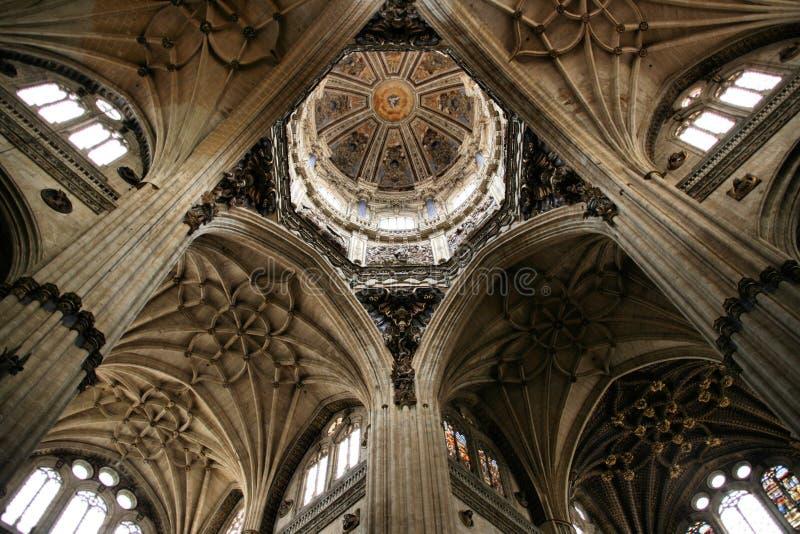 Salamanca cathedral stock images