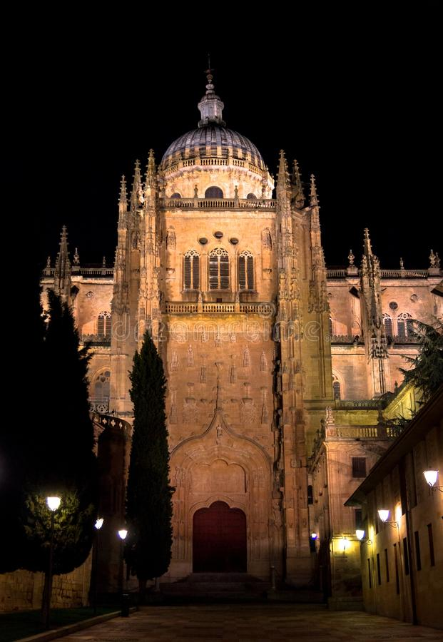 Download Salamanca Cathedral At Night Stock Photo - Image: 28742972