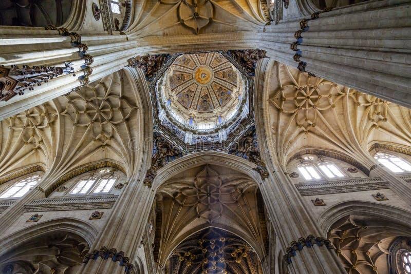 Salamanca för statyer för stenkolonnkupol ny domkyrka Spanien royaltyfri fotografi