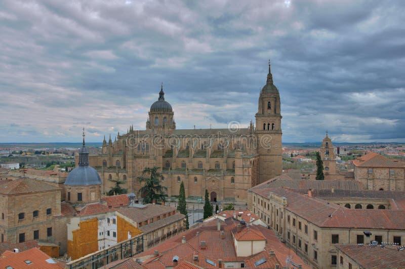 Salamanca katedra fotografia stock
