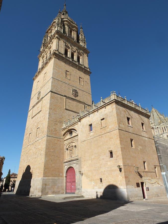 Salamanca-Kathedralen-Ecken-Ansicht stockfotos