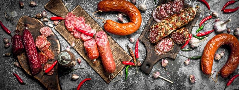 Salamibakgrund Olika sorter av salami med kryddor arkivfoto