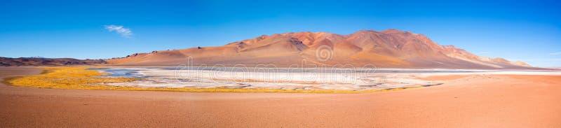 Salar de Aguas Calientes in altiplano van Chili stock fotografie