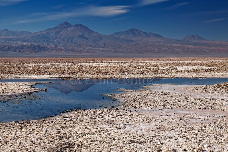 Salar de Atacama, Cile fotografia stock libera da diritti