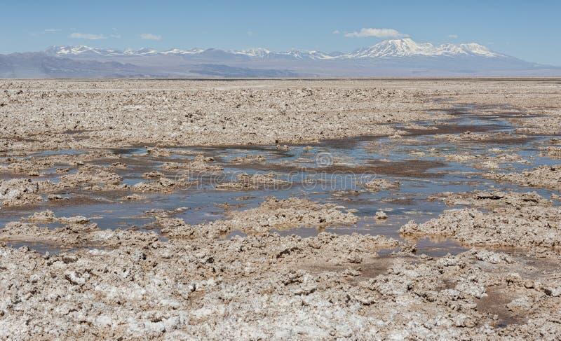 Salar de Atacama, the largest salt flat in Chile Desert of the Atacama, Chile royalty free stock image
