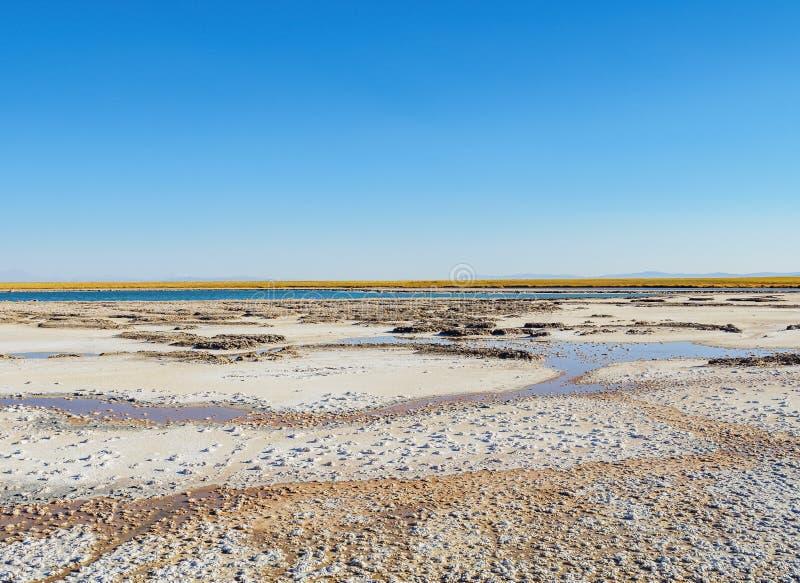Salar de Atacama nel Cile fotografie stock libere da diritti