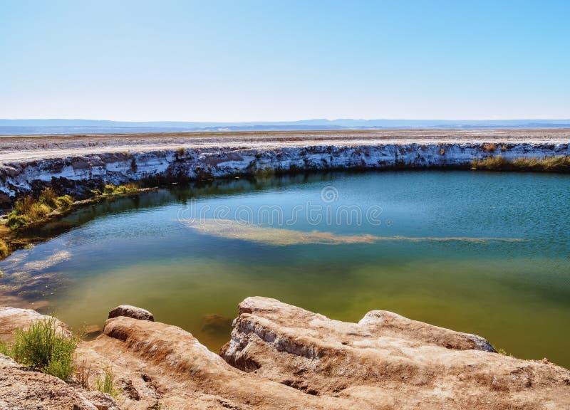 Salar de Atacama nel Cile fotografie stock