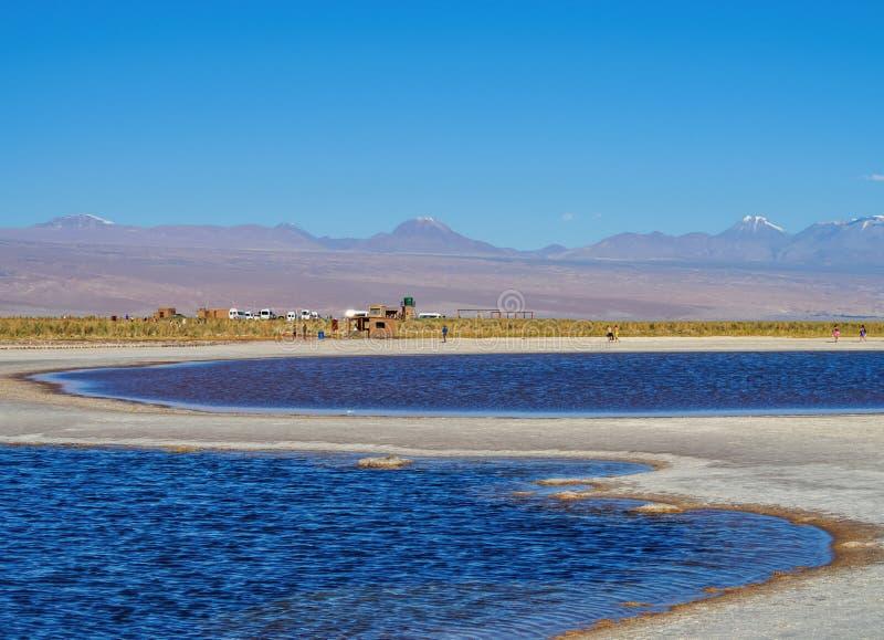 Salar de Atacama nel Cile fotografia stock libera da diritti