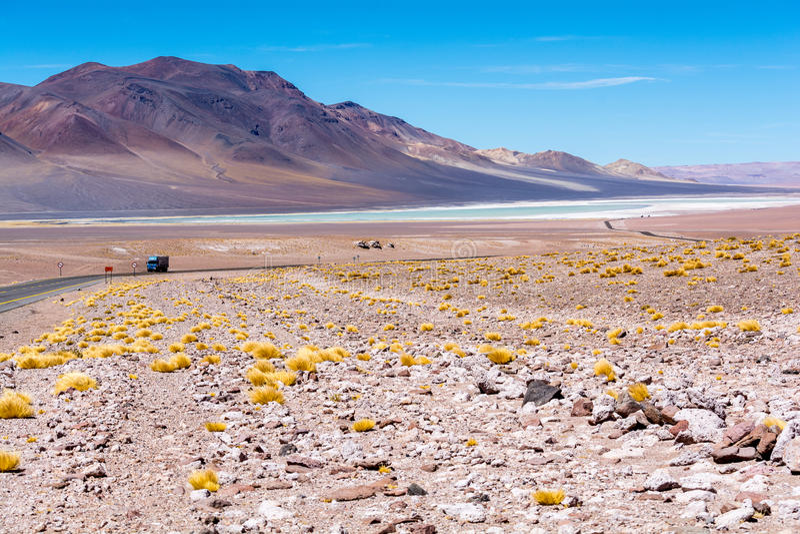 Salar de Tara - camion, route et nature image libre de droits