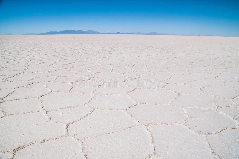 Salar de Uyuni in Bolivia immagini stock