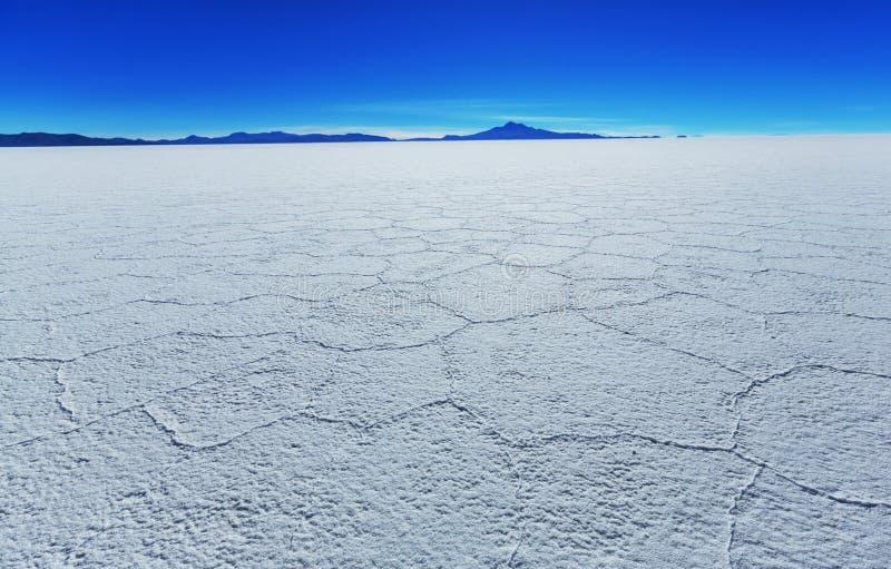 Salar de Uyuni. Bolivia stock photo