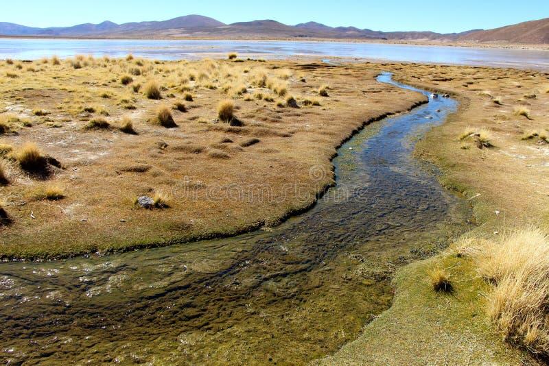 Salar de Uyuni desert white laguna royalty free stock photos
