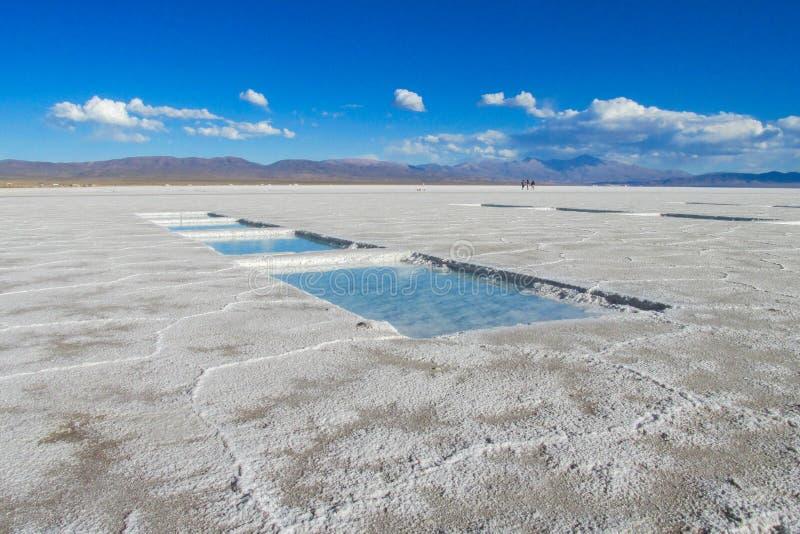 Salar em Bolívia imagem de stock