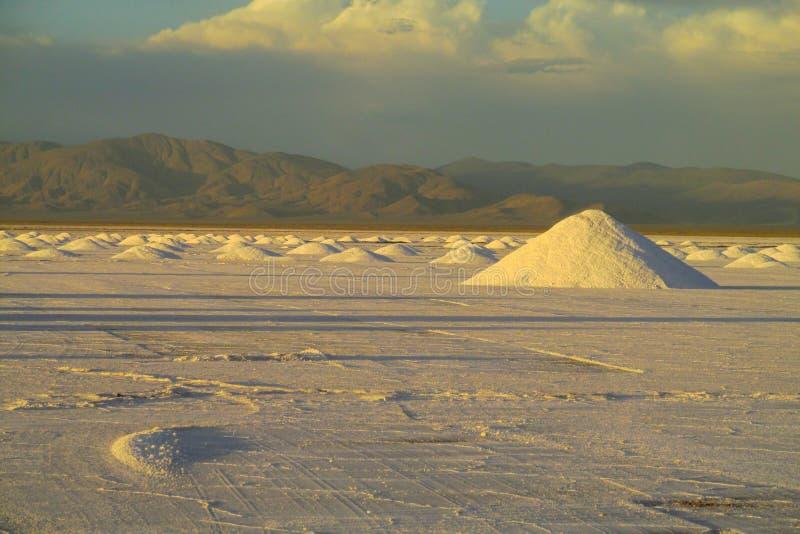 Salar em Bolívia fotos de stock
