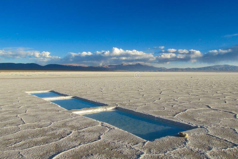 Salar em Bolívia imagens de stock royalty free