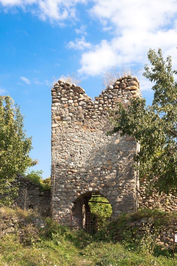 Salasu de Sus Fortress stock photos