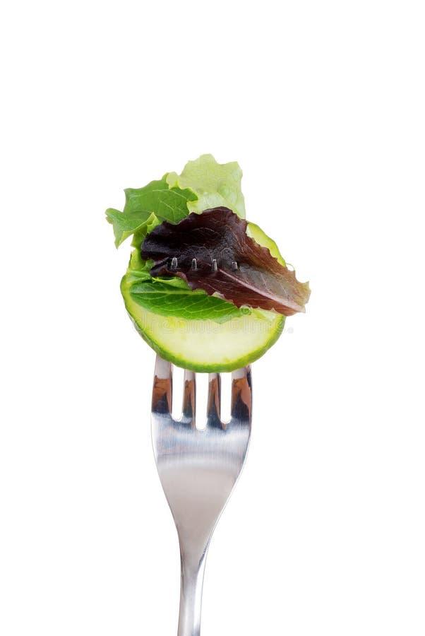 Salat auf einer Gabel lizenzfreies stockbild