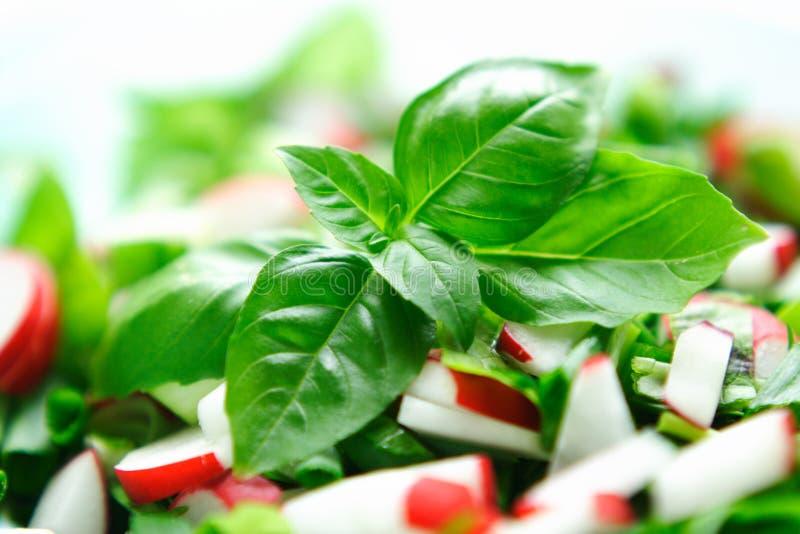 Salat de las verduras frescas fotografía de archivo libre de regalías