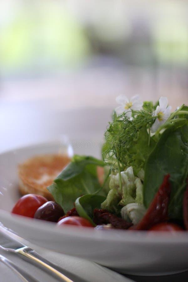 Salat för restauranggetost med körsbärsröda tomater royaltyfria foton