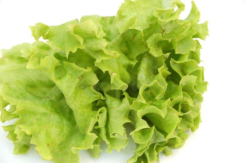 Salat fresco #2 imagens de stock