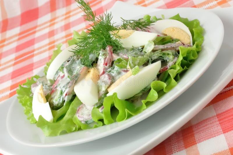 Salat mit Ei lizenzfreie stockfotografie