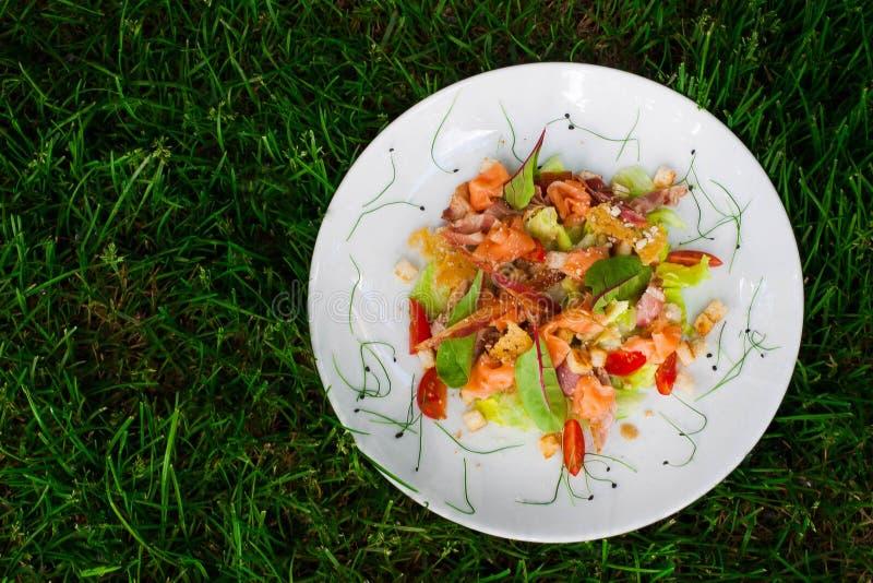 Salat mit microgreen lizenzfreies stockfoto