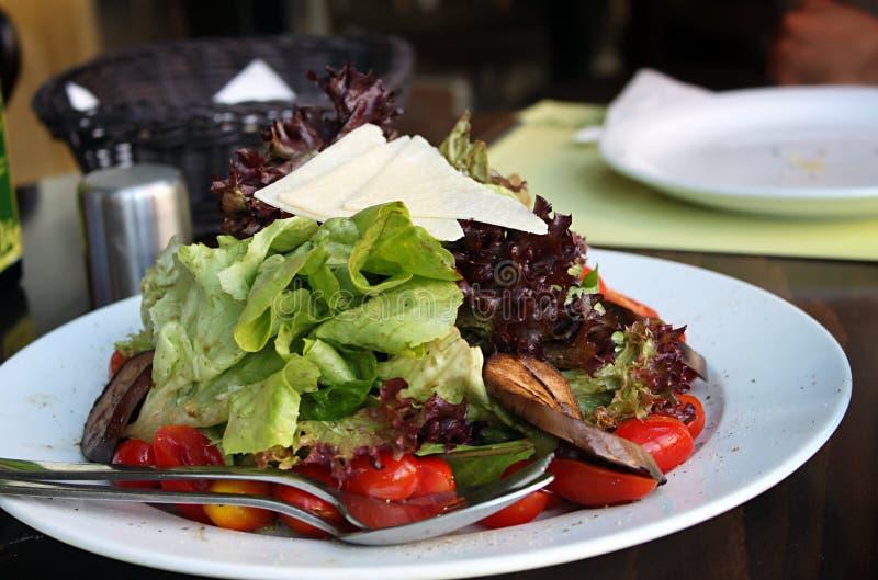 Salat mit Parmesankäse-Parmesankäse lizenzfreie stockbilder