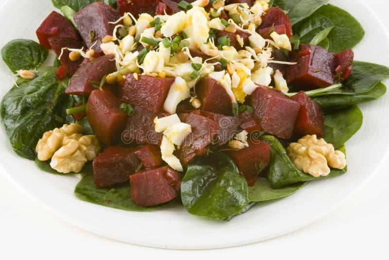 Salat mit roten Rüben auf Spinat stockbild