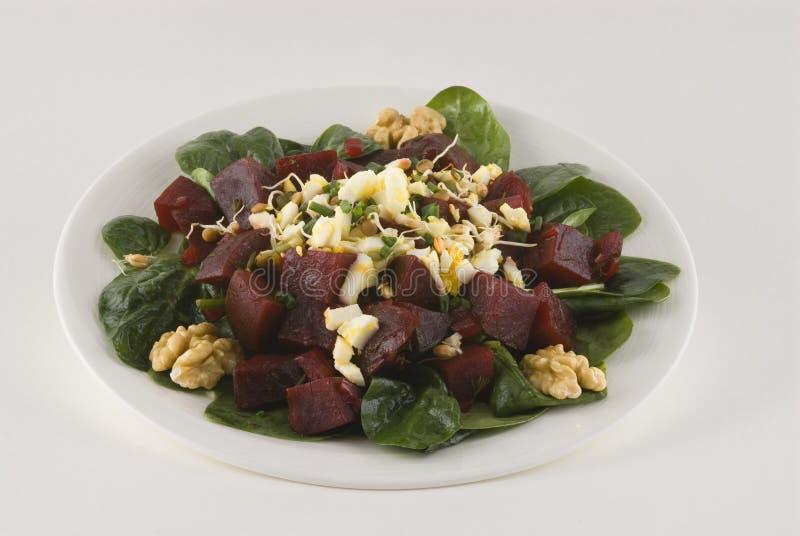 Salat mit roten Rüben, gekochtem Ei und Sojabohnensprossen lizenzfreie stockfotografie